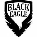 Le Lot de 2 Cartons de 4000 billes C50 Black Eagle