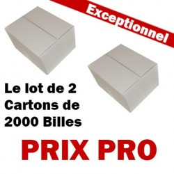 Le lot de 2 Cartons de 2000 Billes